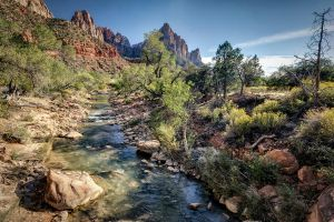 From Along Pa'rus Trail by eprowe
