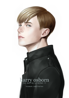 HARRY OSBORN by rixal
