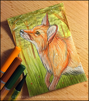 Fox ACEO by Bandarai