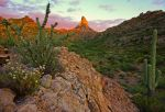 Weavers Needle by TrentLarsonphoto