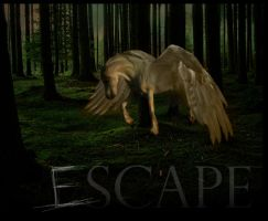 Escape. by whiskeyone