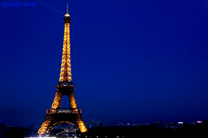 The Eiffel Tower by camsmac
