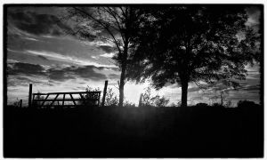 B N W sunset by zeromotion28