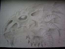 dragons skull by ghost010