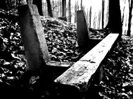 bench with a memory by Vitanol