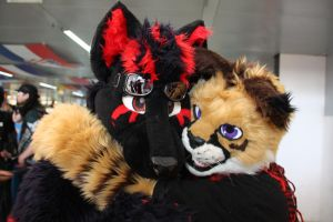 Fursuiter`s at  the Japanday 2012 Duesseldorf by jashis