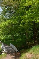 Kynzvart Chateau - small bridge in the golf course by karbous