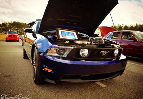 Blue 5.0 Mustang :Blue Dragon: by PhotographicCrypto