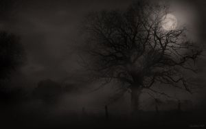 Misty Tree (Dark) by Scabeater
