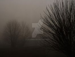 Lost in the Fog by Levamen