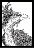 Black and White Phoenix by hippogriffon
