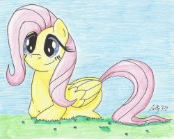 Fluttershy by Laffy372