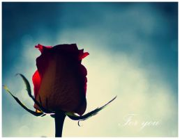 For You by Jack-Nobre