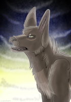 .: In The Night :. by MorningAfterWolf