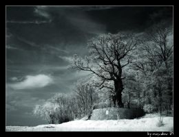 silent place by mescaline73