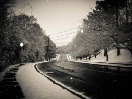 Alabama Snow 2010 by mikeheer