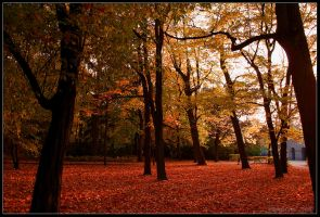 Autumn in Warsaw by Demawend