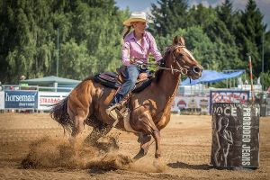 Rodeo_4055_XP by flankers