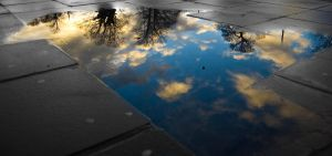 Puddle of Life 2 by umboody