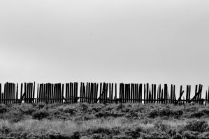 Snow fence on summer vacation by kevoka