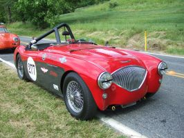 Austin-Healey 100 by Aya-Wavedancer