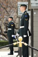 Ceremonial Guard - Ottawa by PhilsPictures