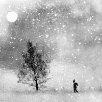 on his own... by tuminka