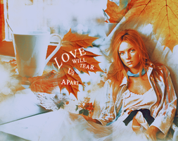 love will tear us apart by claudiaV3
