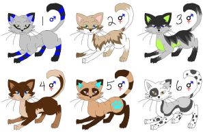 Cat Adoptables: CLOSED by NewHopeRescue