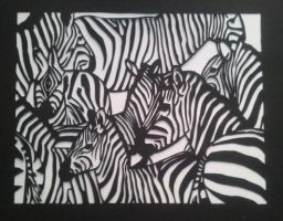 Zebras by Maleijn