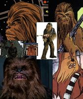 Collage of Chewbacca by LadyIlona1984