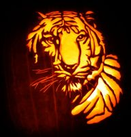 Tiger Carve by masonfetzer