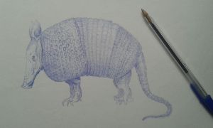 ARMADILLO by ErreDe