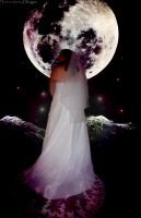 Wedding upon the moon by dancarrtoonist