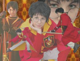 Harry Potter Quidditch by IchigoKitty