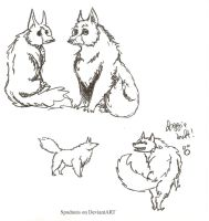Doggies by Spudnuts