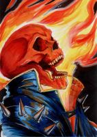 241. Ghost Rider by Christopher-Manuel