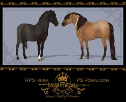Round Table of Breeders - Breeding number One by Jullelin