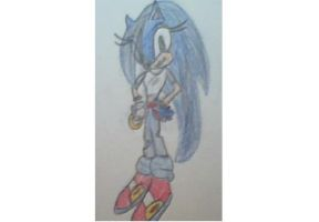 Sonic's Wish: Female Sonic by MarioDS01