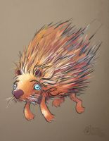 Porcupine Rollin by draweverywhere