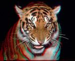 anaglyph0.1 by robbco