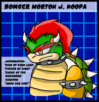 Data Card- Bowser by SladeJT