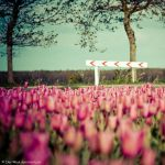 It's a sign by Oer-Wout