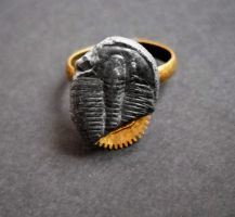 Steampunk Trilobite Ring by KatarinaNavane