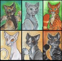 ACEO Cat Series Sheet 2 by Eviecats