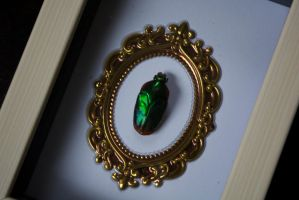 Jewel Beetle by TheButterflyBabe