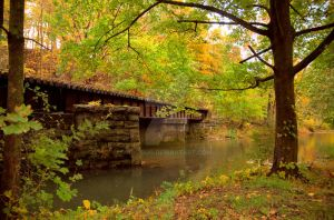 Fall Bridge by Digibug