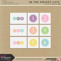 PsMar17 In the Pocket - 365 Journal Cards by enhancers