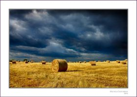 When the hay's cut... by Michel-Lag-Chavarria