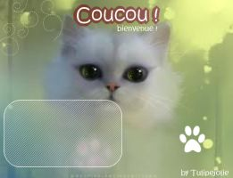 Base fiche Chat by Tulipefire